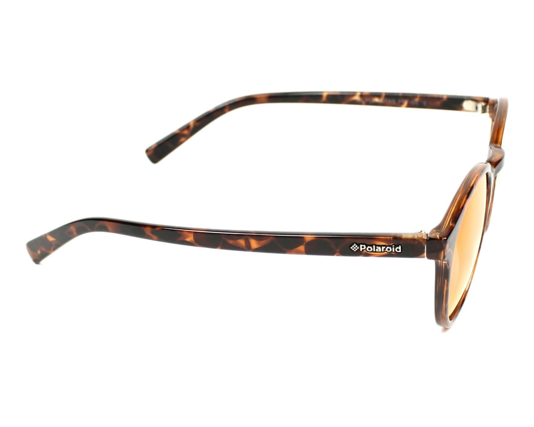 ed238f6b930 Sunglasses Polaroid PLD-6013-S PPT OZ 50-22 Havana side view